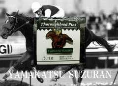 ヤマカツスズラン・サラピン・ピンズ・1つ・競馬