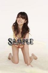 【写真】L判 :大島優子350