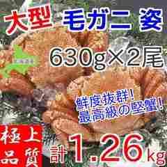 大型毛ガニ630g×2尾セット/北海道産/身入り抜群/毛蟹/計1260g