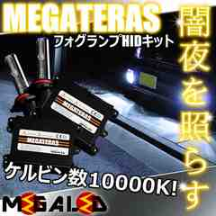 超LED】エルグランドE52前期/LEDヘッド車除/フォグランプHIDキット/H8/10000K