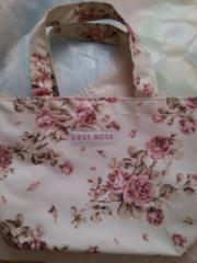 ☆LEST  ROSE☆バッグ
