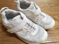 シンプル!運動靴 20cm