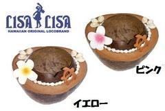 ハワイアンココナツ灰皿ヤシの実プルメリアホヌcoco