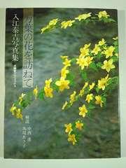 ★入江泰吉写真集★★「万葉の花を訪ねて」★大型本★★美品★★