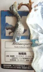 ■チョコラザウルス第二弾:036始祖鳥■