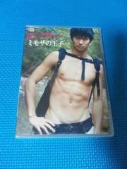 綿貫駿 DVD「ミモザの王子」