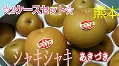 熊本産★秋月梨☆秀品☆☆たっぷり2ケース☆