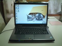 すぐ使える Vista SP2 マルチ ワイド 無線 FMV-NF40W 綺麗
