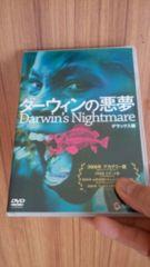 ■ダーウィンの悪夢■送料込み!