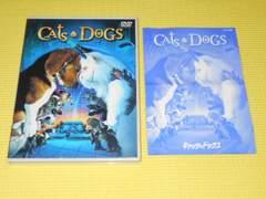 DVD★キャッツ&ドッグス