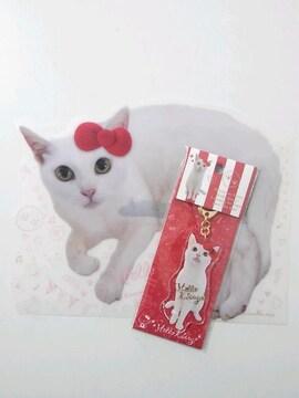 サンリオ ハローキティ×あなごちゃん アクリルキーホルダー A5クリアファイル 猫侍 *新品