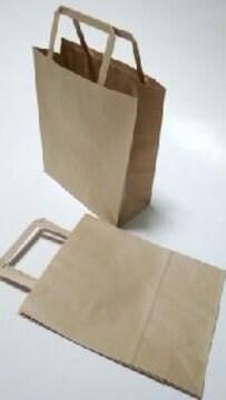 未晒無地手提げ紙袋★シンプル無地紙袋10枚