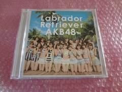 先着1円!AKB48 ラブラドールレトリバー ※同梱不可