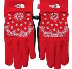 Supreme × North Face Bandana Glove Red