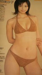 安田美沙子グラビア雑誌からの切り抜き