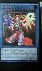 遊戯王 日本版 sophiaの影霊衣(レリーフ、美品) CROS ネクロス