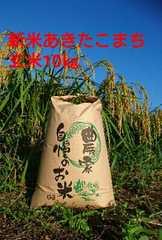 茨城29年産新米あきたこまち玄米5�s