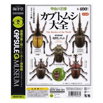 海洋堂 カブトムシ大全 Beetles 全5種セット ガチャポン フィギュア