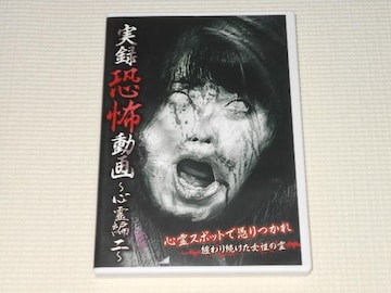 DVD★実録恐怖動画 心霊編 二