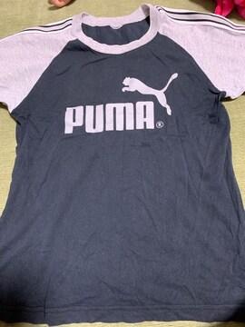 PUMA Tシャツ 150