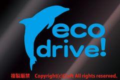 eco drive!イルカ/ステッカー(空色)エコドライブ