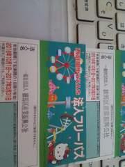 西武園ゆうえんち☆彡フリーパス☆彡2枚☆彡