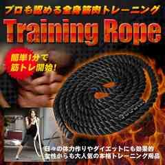 体幹を鍛える 振るだけ筋トレ 簡単トレーニング ジムロープ