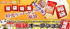 お楽しみ袋まとめ売り2018お年玉福袋セット/お買得3万円「福袋」