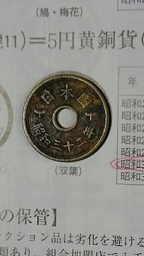 現行5円黄銅貨(楷書体)昭和32年