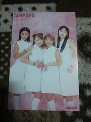 タンポポ 2000年 CDでーた 付録 ポストカード 1枚