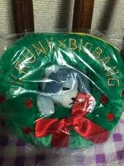 BIG BANG クリスマスリース ぬいぐるみ 【D-LITE】テソン