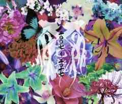 ◆己龍 【二〇〇七〜二〇一七 -B TYPE-】 2CD+DVD 新品 特典付き