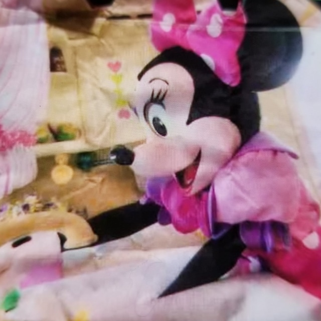 TDR☆ミニー&ガールズ【トートバッグ】女子会★lmagining the Magic