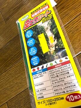 新品同様/虫取りシート9枚
