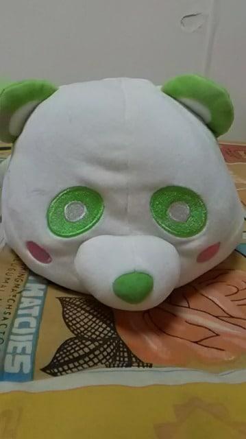 AAA・え〜パンダ・もちもちBIGぬいぐるみ・緑 浦田  < タレントグッズの